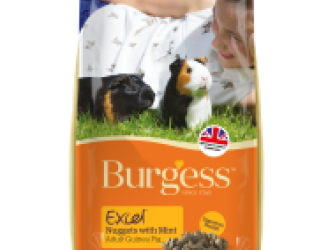 Burgess Excel for Adult Guinea Pigs